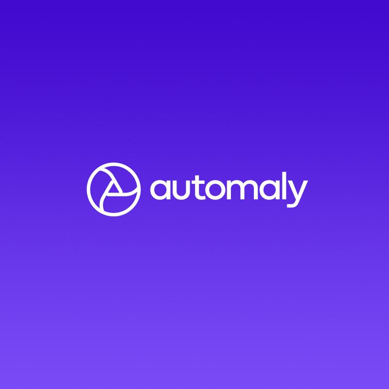 Automaly WordPress website